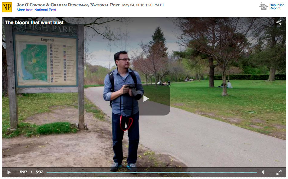 National Post Video Story - May 24, 2016
