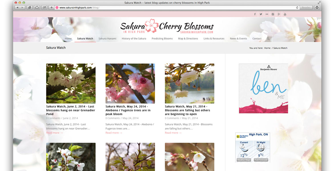 SakuraInHighPark.com Responsive Website: multiple posts