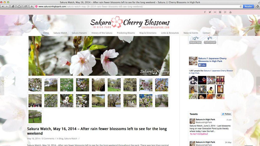 SakuraInHighPark.com Responsive Website: page with gallery